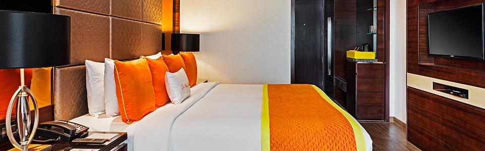Zone Raipur - Park Hotels