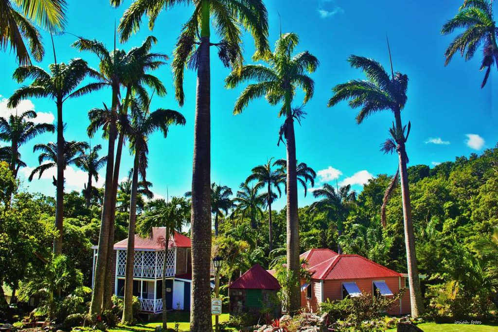 Exterior shot of Hermitage Plantation Inn in Nevis, framed by large palm trees