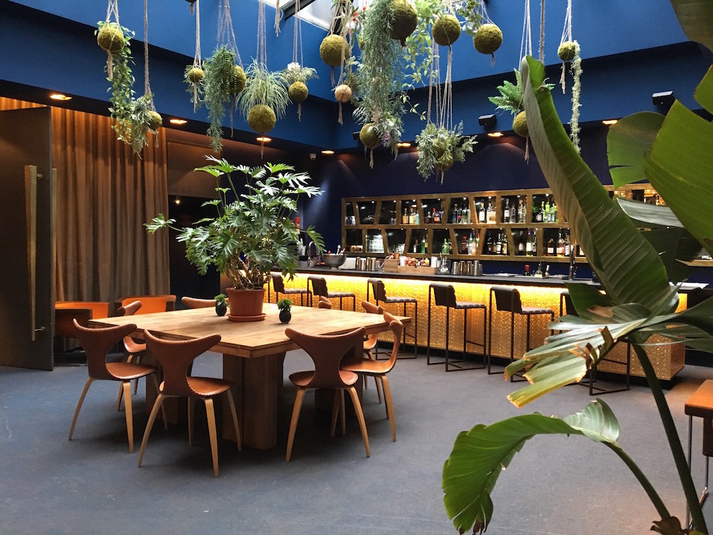 Strong vibrant colours and plants in modern and quirky hotel lobby