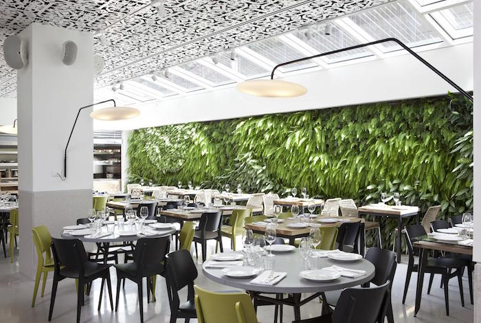 Living wall in restuarant