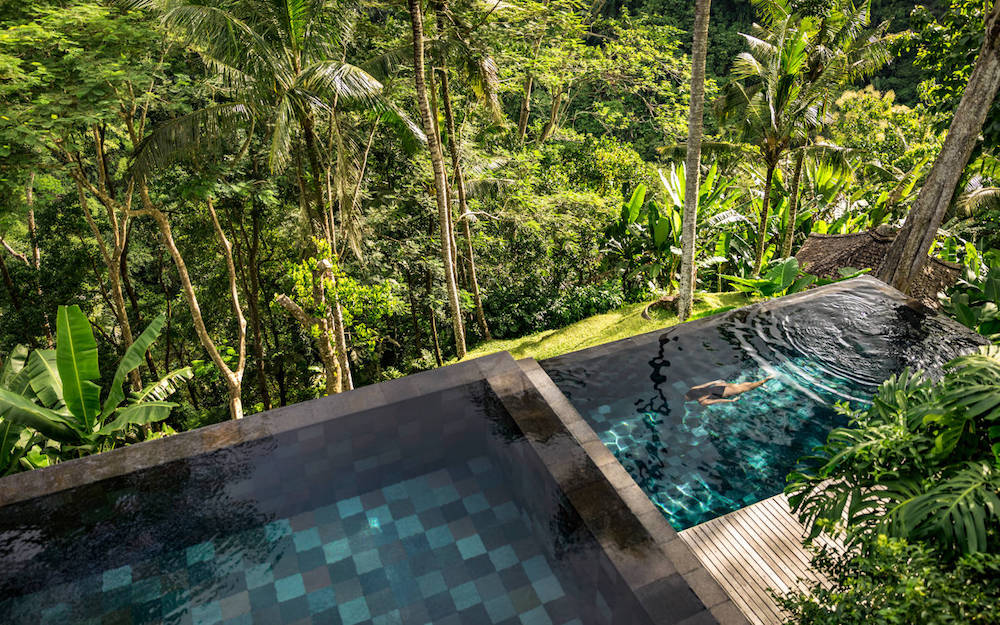 Outdoor pool surrounded by jungle