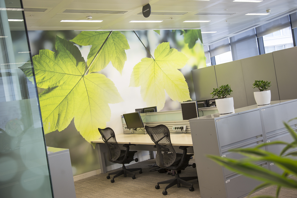 An office with a wallcovering of leaves
