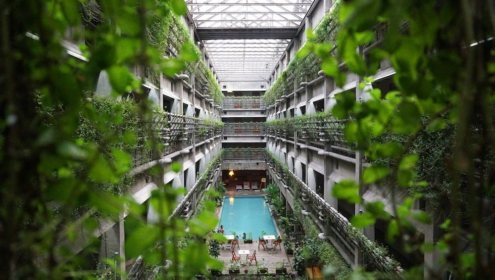 Large hotel atrium with living walls