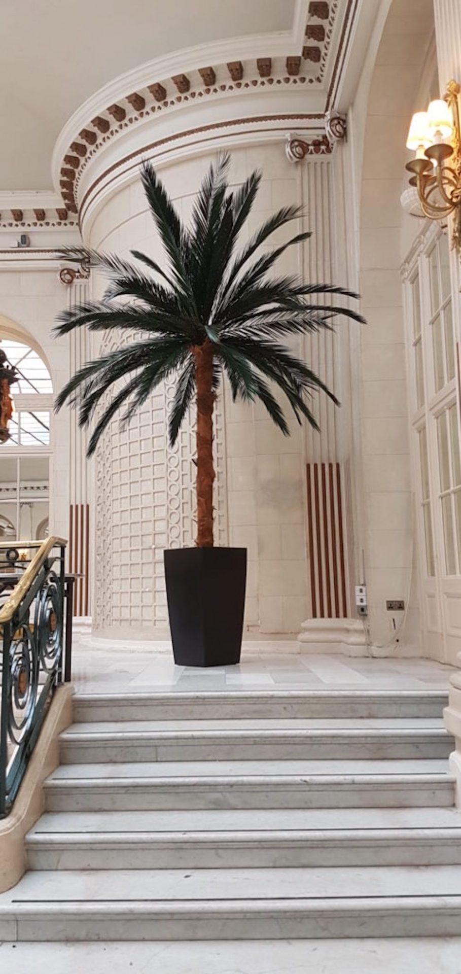 Image credit: Leaflike/Waldorf Hilton Palm Court