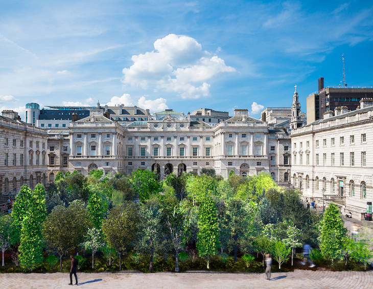 Forest for changfe at Somerset House, London