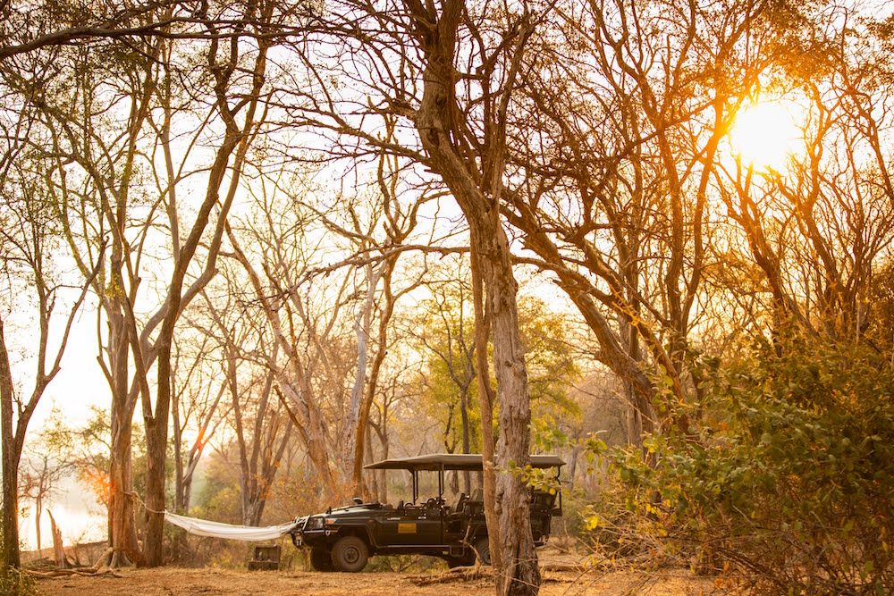 Safari truck and hammock in wilderness